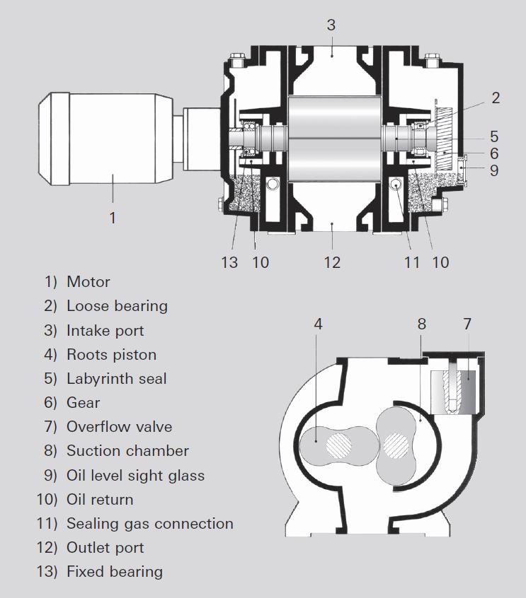 Operating principle of a Roots pump